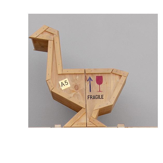 _sending-animals_goose